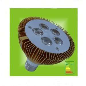 Par30 High Power 10w LED Spot Light Bulb with Warm White Electronics