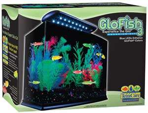 Tetra GloFish Aquarium Kit, 3 Gallon